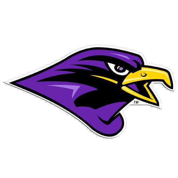 m-falcon-logo.jpg