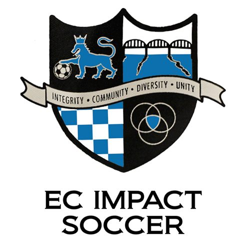 logo-ECImpact.jpg