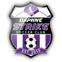 DSSC-logo.jpg