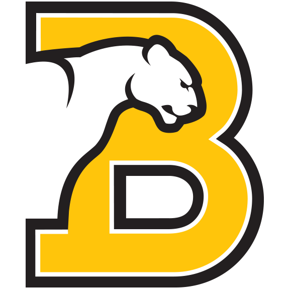 bsc-logo.png